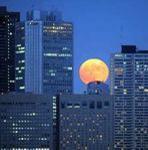 中秋の名月くっきり、残暑の中にも秋の気配 : 社会 : YOMIURI ONLINE(読売新聞)