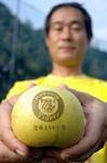 甘い?固い?「阪神優勝まちがい梨」の販売開始 : 社会 : YOMIURI ONLINE(読売新聞)